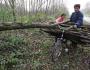 Látlak, cigány, gyere elő! – A romákra kiszabott szabálysértési bírságok tendenciái