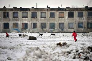 Kutyák, gyerekek, nyomor (Fotó: Népszabadság - Móricz Simon)